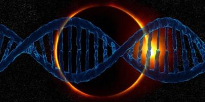 Солнечное затмение ДНК