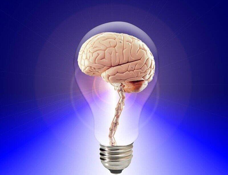 Мозг лампа