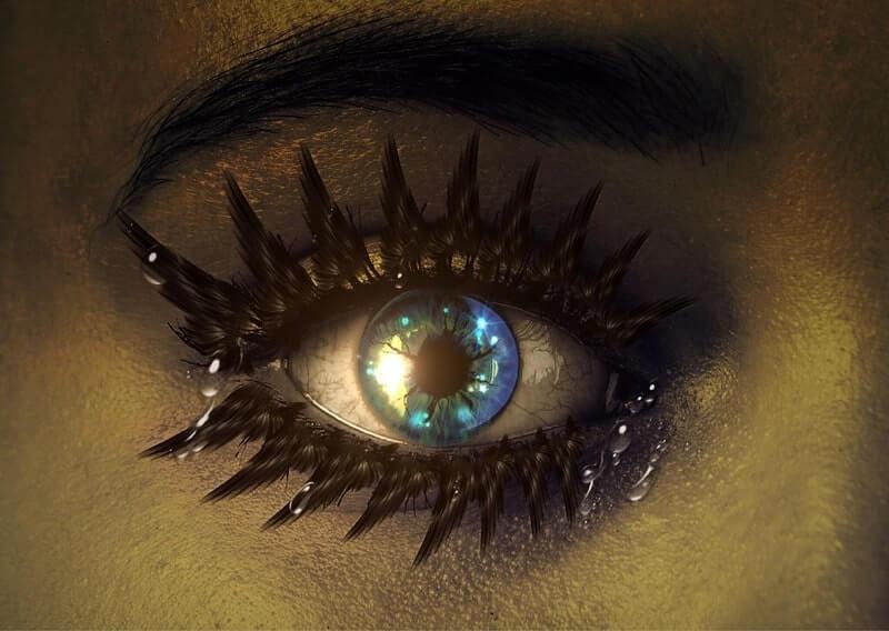 Глаз ресницы брови