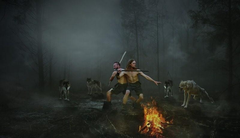Волки воины защита
