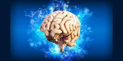 Человеческий мозг энергия