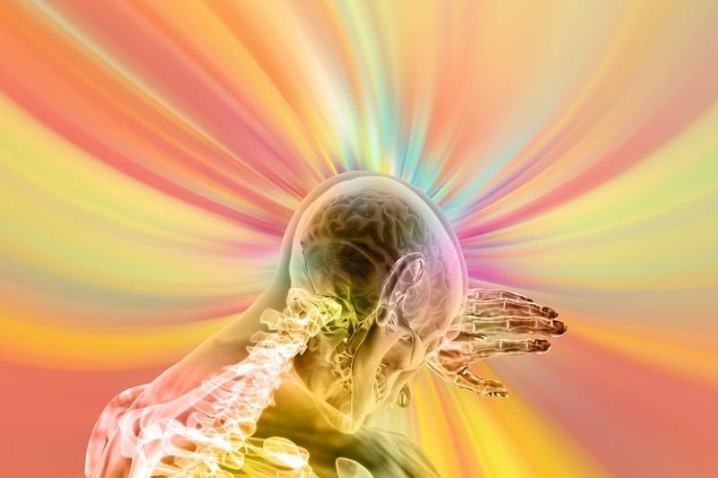 Мозг скелет поток