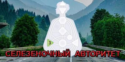 Селезеночный Авторитет в Дизайне Человека