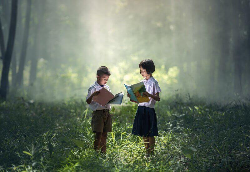 Дети лес книги
