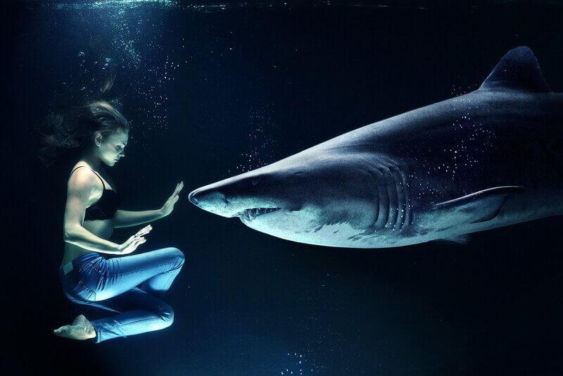 Женщина акула под водой
