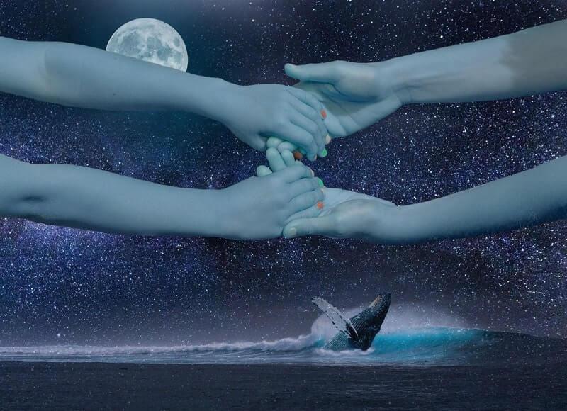 Руки луна кит